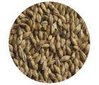 Солод ячменный Венский ЕВС 3,5-4 (Курский солод) 1 кг